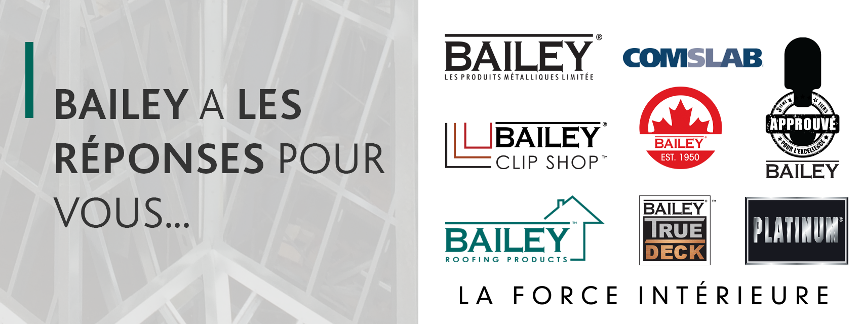 Bailey Solutions French Banner